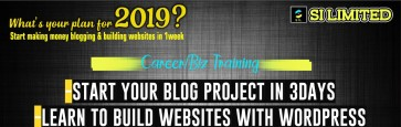Blogging/WordPress Website Design Trainings