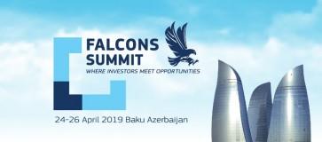 Falcons Summit