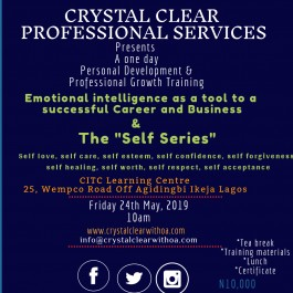 Emotional Intelligence as a tool to successful career & business and the self-series