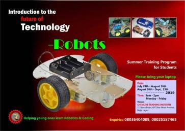SUMMER TRAINING PROGRAM-ROBOTICS